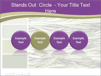A background closeup PowerPoint Template - Slide 76