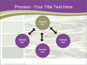 A background closeup PowerPoint Template - Slide 91