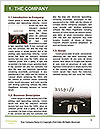 0000088121 Word Template - Page 3