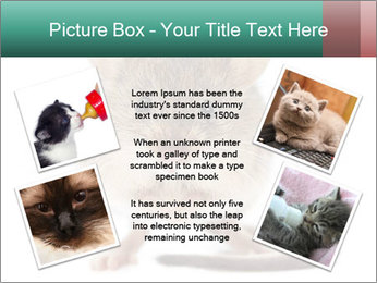 House mouse PowerPoint Template - Slide 24