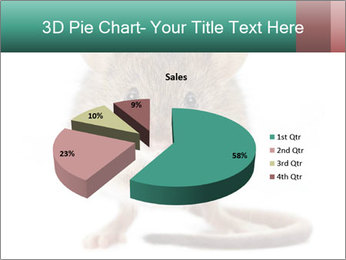 House mouse PowerPoint Template - Slide 35