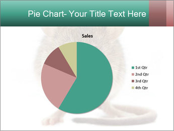 House mouse PowerPoint Template - Slide 36