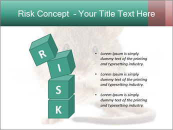 House mouse PowerPoint Template - Slide 81