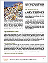 0000088134 Word Template - Page 4