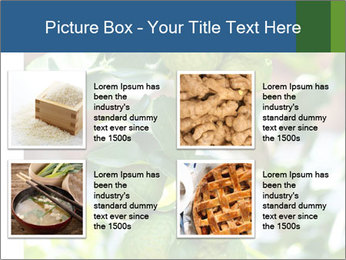 Bergamot on Tree PowerPoint Template - Slide 14