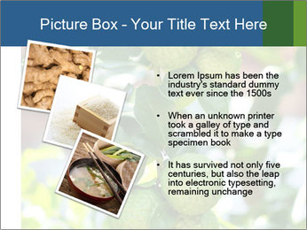 Bergamot on Tree PowerPoint Template - Slide 17