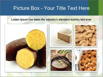 Bergamot on Tree PowerPoint Templates - Slide 19