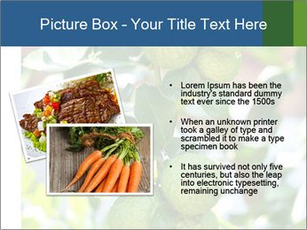 Bergamot on Tree PowerPoint Template - Slide 20