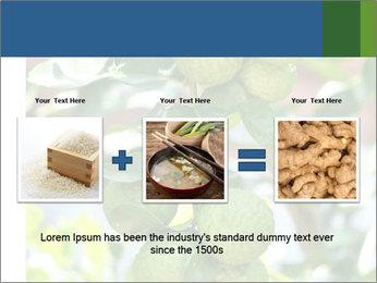 Bergamot on Tree PowerPoint Template - Slide 22