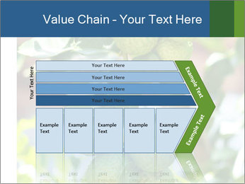 Bergamot on Tree PowerPoint Template - Slide 27