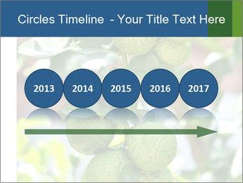 Bergamot on Tree PowerPoint Templates - Slide 29