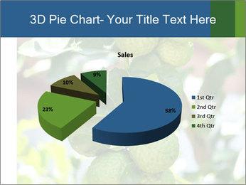 Bergamot on Tree PowerPoint Template - Slide 35