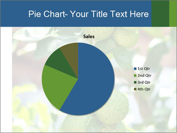 Bergamot on Tree PowerPoint Templates - Slide 36