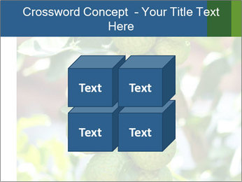 Bergamot on Tree PowerPoint Template - Slide 39