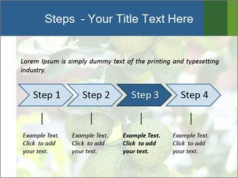 Bergamot on Tree PowerPoint Template - Slide 4