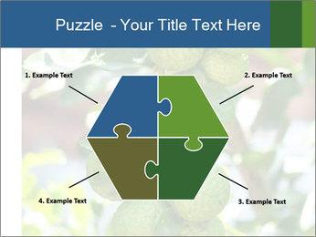 Bergamot on Tree PowerPoint Template - Slide 40