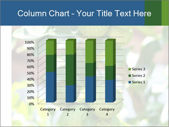 Bergamot on Tree PowerPoint Template - Slide 50