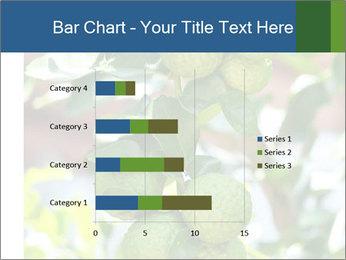 Bergamot on Tree PowerPoint Template - Slide 52