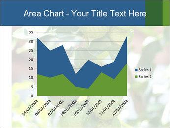Bergamot on Tree PowerPoint Template - Slide 53
