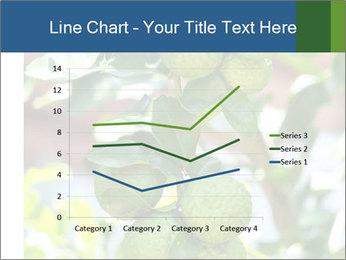 Bergamot on Tree PowerPoint Template - Slide 54