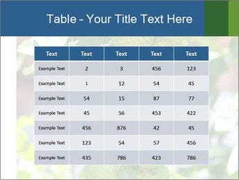 Bergamot on Tree PowerPoint Template - Slide 55