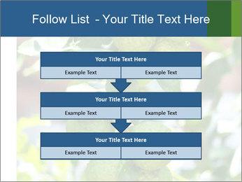 Bergamot on Tree PowerPoint Template - Slide 60