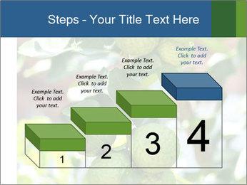 Bergamot on Tree PowerPoint Template - Slide 64