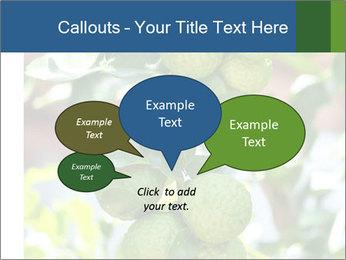 Bergamot on Tree PowerPoint Templates - Slide 73
