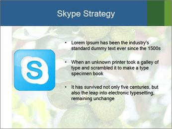 Bergamot on Tree PowerPoint Template - Slide 8