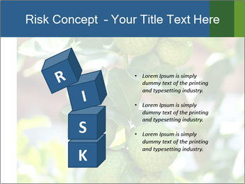 Bergamot on Tree PowerPoint Templates - Slide 81
