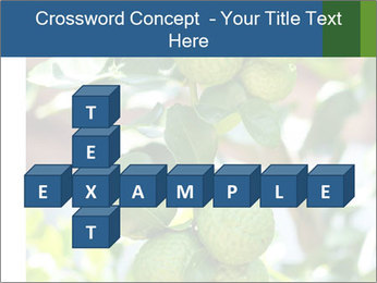 Bergamot on Tree PowerPoint Template - Slide 82