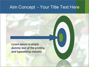 Bergamot on Tree PowerPoint Template - Slide 83