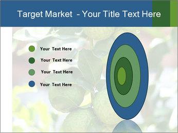 Bergamot on Tree PowerPoint Template - Slide 84