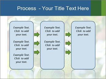 Bergamot on Tree PowerPoint Template - Slide 86