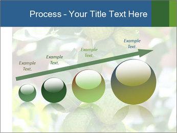 Bergamot on Tree PowerPoint Template - Slide 87