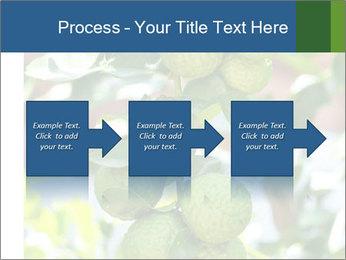 Bergamot on Tree PowerPoint Template - Slide 88