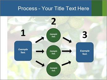 Bergamot on Tree PowerPoint Template - Slide 92