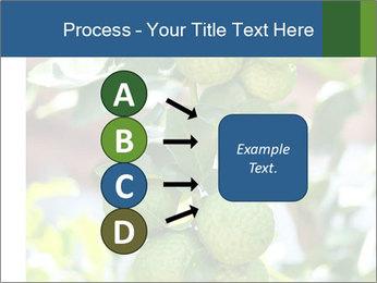 Bergamot on Tree PowerPoint Template - Slide 94