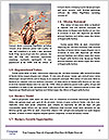 0000088140 Word Templates - Page 4