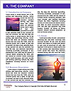 0000088144 Word Template - Page 3