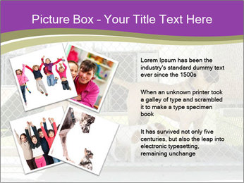 Large and small dogs PowerPoint Template - Slide 23