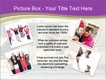 Large and small dogs PowerPoint Template - Slide 24