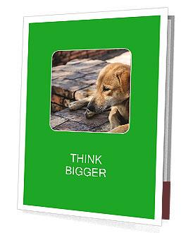 0000088147 Presentation Folder