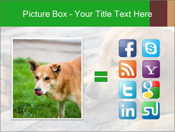 Dog sad PowerPoint Template - Slide 21