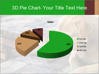 Dog sad PowerPoint Template - Slide 35