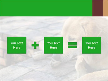 Dog sad PowerPoint Template - Slide 95