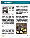 0000088153 Word Templates - Page 3