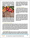 0000088153 Word Templates - Page 4