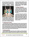0000088158 Word Template - Page 4