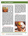 0000088163 Word Template - Page 3
